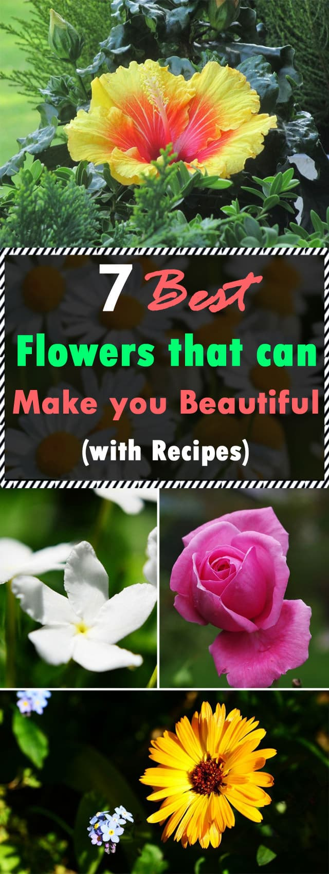 7 Best Flowers That Can Make You More Beautiful Flowers For Skin