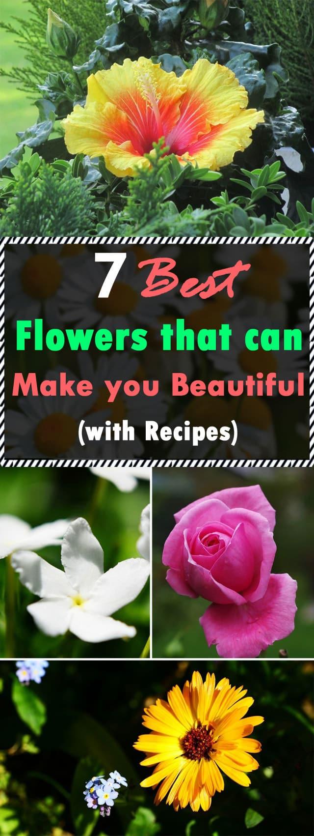 Best Spring Flowers For Your Garden