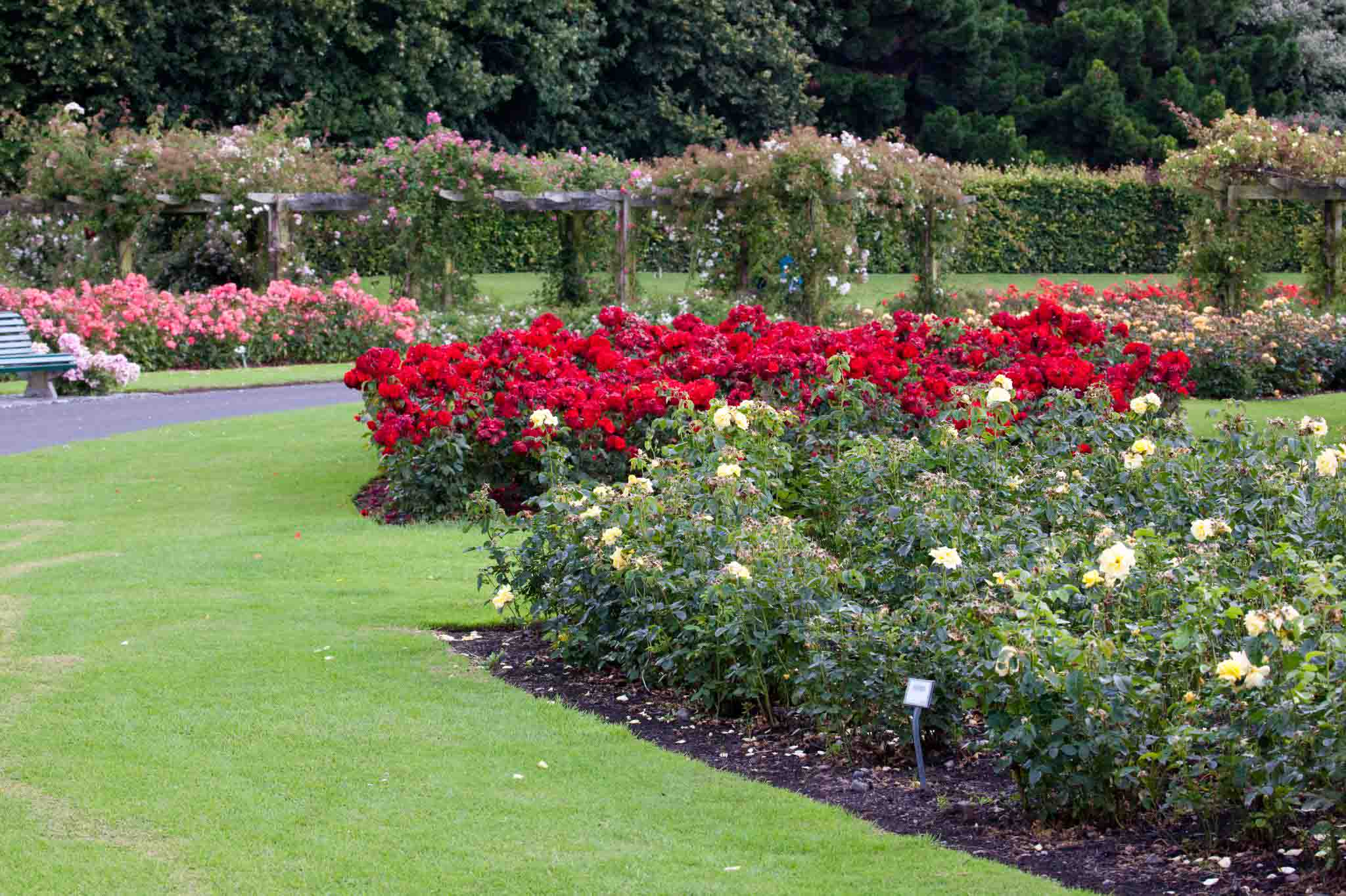 Make Money from Gardening: 7 ideas | Balcony Garden Web