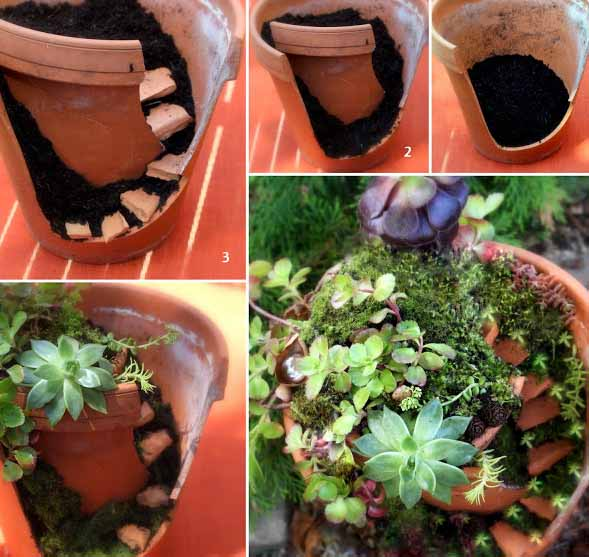 How To Make Fairy Garden. How To Make Fairy Garden