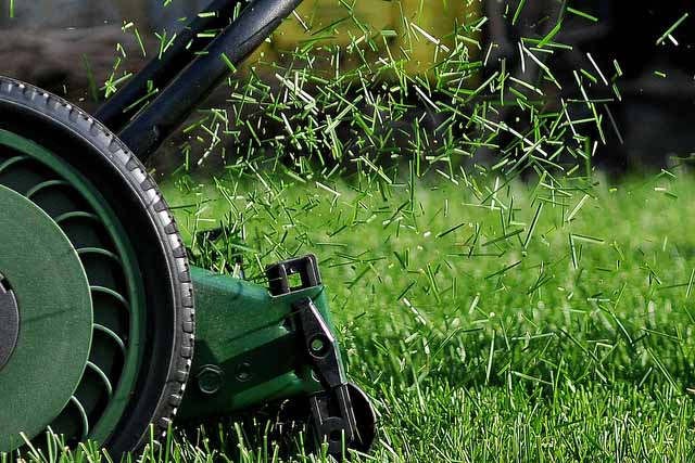 Ideal grass cutting height for lawn balcony garden web for Lawn mower cutting grass