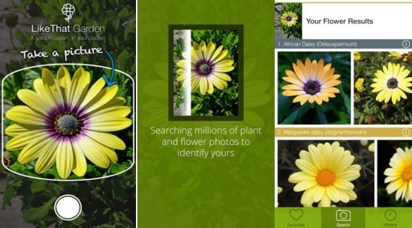 Best plant identification apps balcony garden web like that garden flower identification mightylinksfo