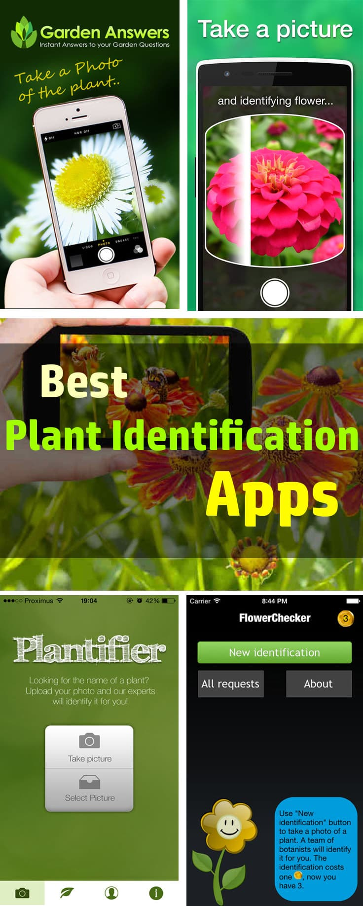 House plant identification tool - Want To Identify Plants And Trees Quickly Take Help Of Your Smartphone And Download These