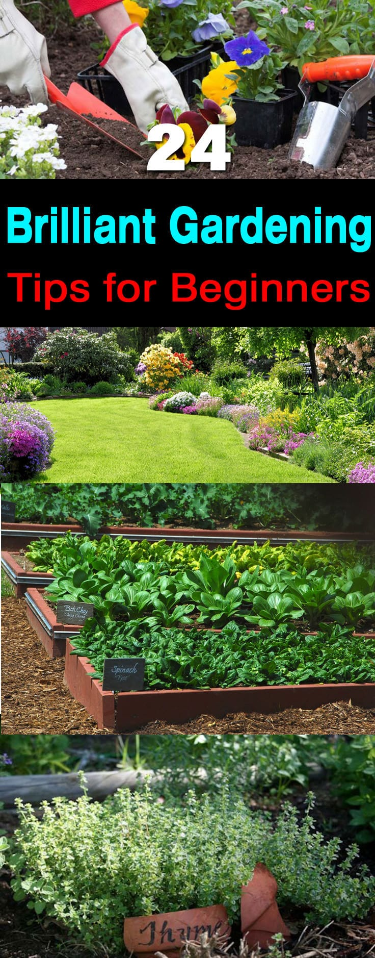 24 gardening tips for beginners balcony garden web for Gardening tips