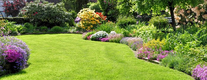 Every Color You Use In Your Garden Has Its Importance, Cool Colors Like  Blue, Green, White Are Appealing And Blends In Space. Warm Colors Like Red,  Orange, ...