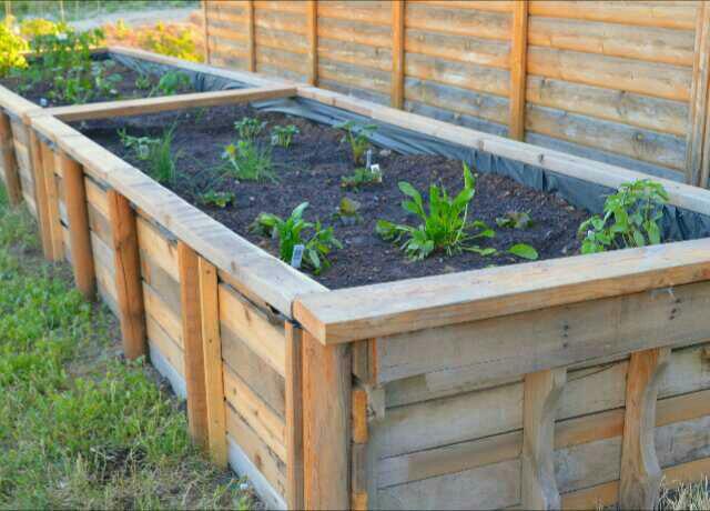 Pallet Ideas For The Garden Wonderful pallet ideas for the garden img20150718200246 workwithnaturefo
