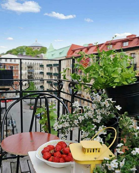 If You Are Looking For The Most Optimal Small Outdoor: 10 Small Balcony Garden Ideas You Should Look