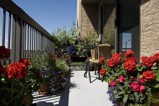 Balcony garden inside view mini