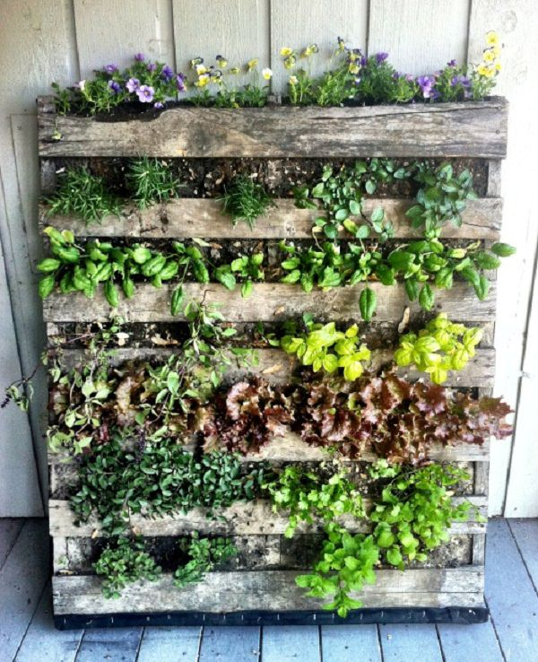 balcony herb garden ideas you would like to try, Beautiful flower