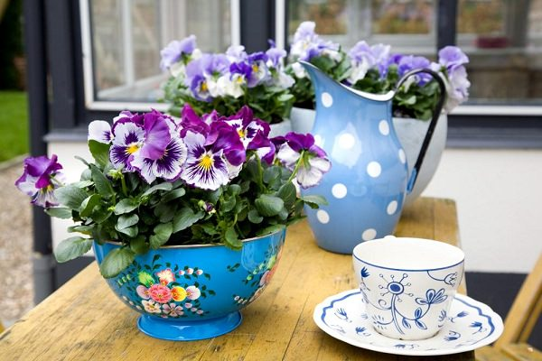 Use Colorful Bowl As Planter To Give Your Patio A Unique Touch. Flowers  Like Pansies, Petunias And Snapdragons That Release Mild Fragrance Are Look  Great In ...