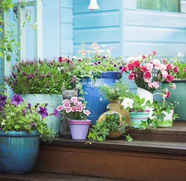 Patio and balcony planter ideas for Garden planter ideas