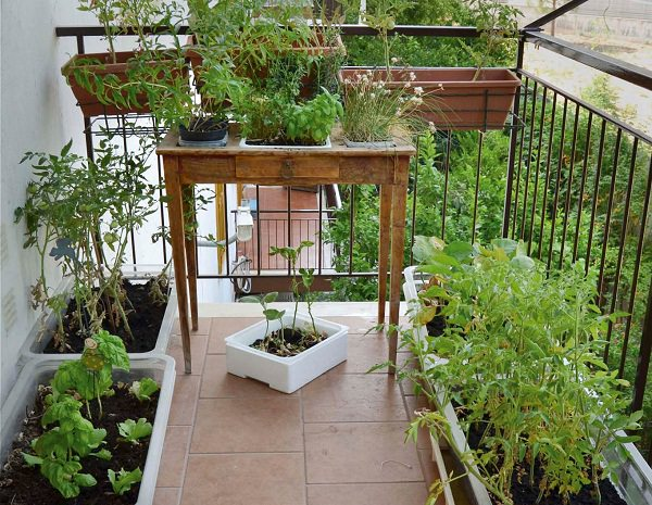 Balcony Garden Design design challenge ten urban balcony garden ideas Table Garden Is Used To Grow Plants Two Main Benefit Of Table Garden Is That If You Have A Back Problem Then You Dont Need To Get Down And Up
