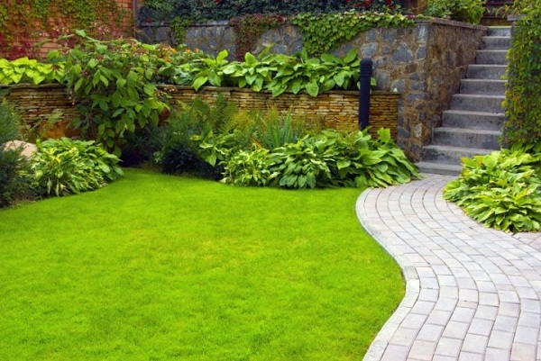 In The Picture White Bricks Are Arranged To Make This Exquisite Garden Path,  Which Is Cutting The Lawn Smoothly.