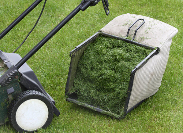 Do You Know That Grass Clippings In The Garden Can Make It More Functional.  The Use Of Grass Can Be Very Helpful And Eco Friendly. How? Check Out Below.