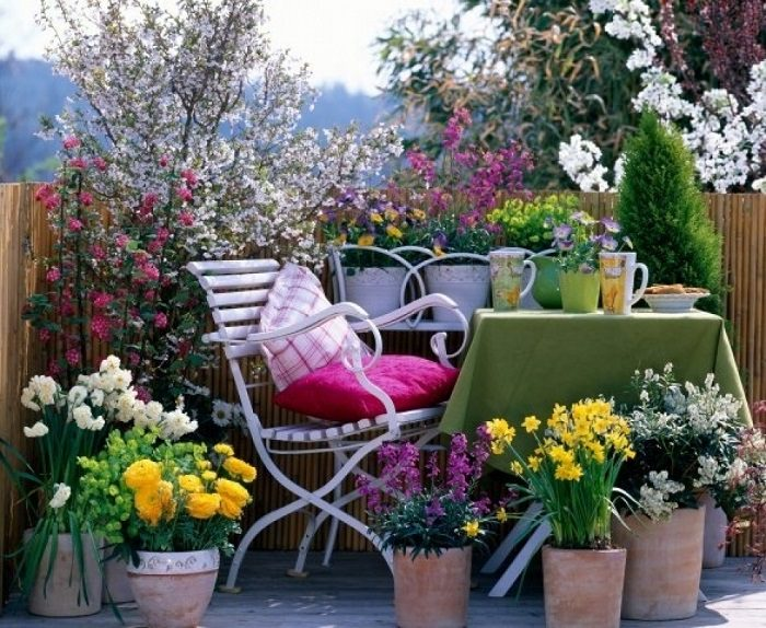 plants for east faced balcony - Home Flower Garden Designs
