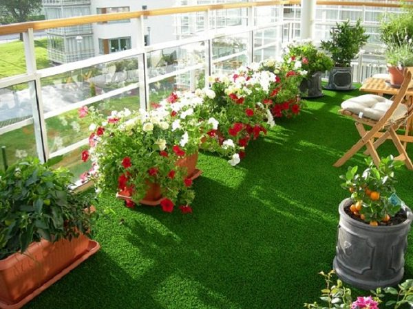 Exceptional Balcony Garden Design Tips (1)_mini