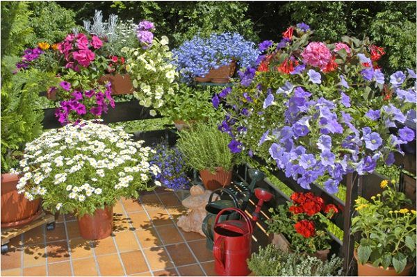 Balcony Garden Design simple balcony garden design decor ideas Tip 3 Balcony Garden Design Tips 3_mini