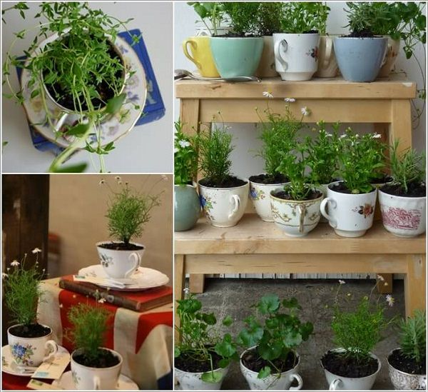 grow a herb garden in vintage teacups that you no longer use not only it will look good but this way you will be able to grow your own herbs - Garden Ideas Vintage