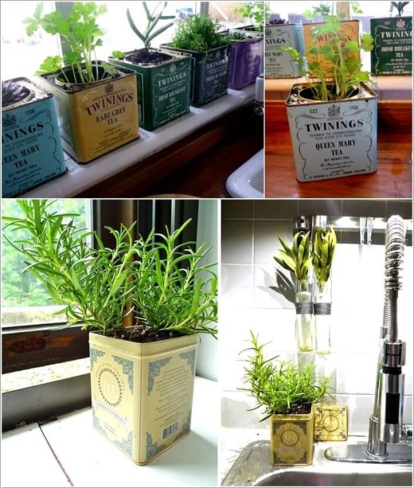 Indoor Tea Garden 24 indoor herb garden ideas to look for inspiration balcony garden web tea can herb garden workwithnaturefo