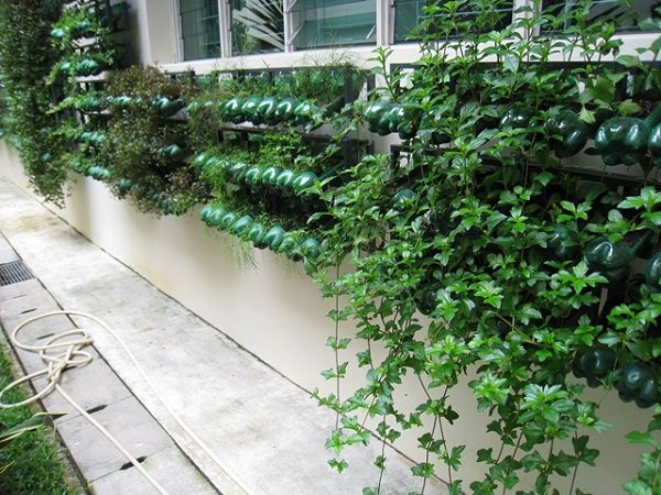 13 plastic bottle vertical garden ideas soda bottle for Balcony vertical garden