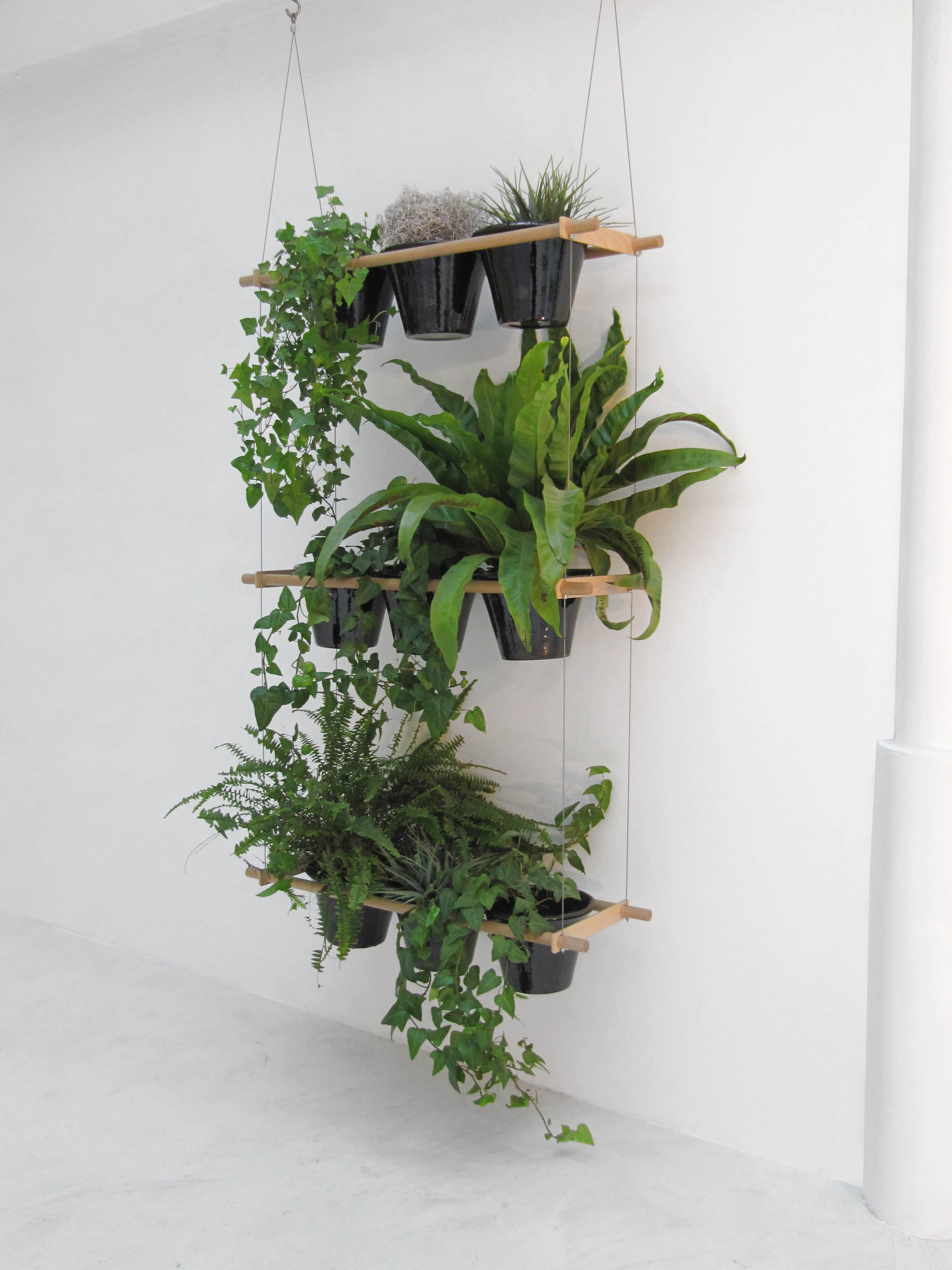 99 great ideas to display houseplants indoor plants decoration page 2 of 5 balcony garden web - Hangende zimmerpflanzen ...