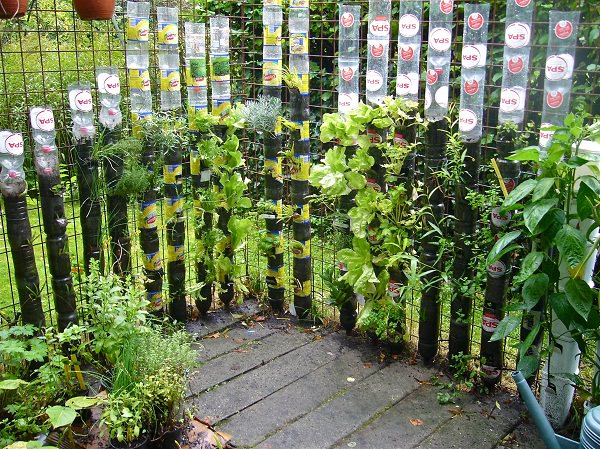 A remarkable kitchen garden with plastic bottles with minimal means and  efforts  It can be set up easily and does not require regular watering. 13 Plastic Bottle Vertical Garden Ideas   Soda Bottle Garden