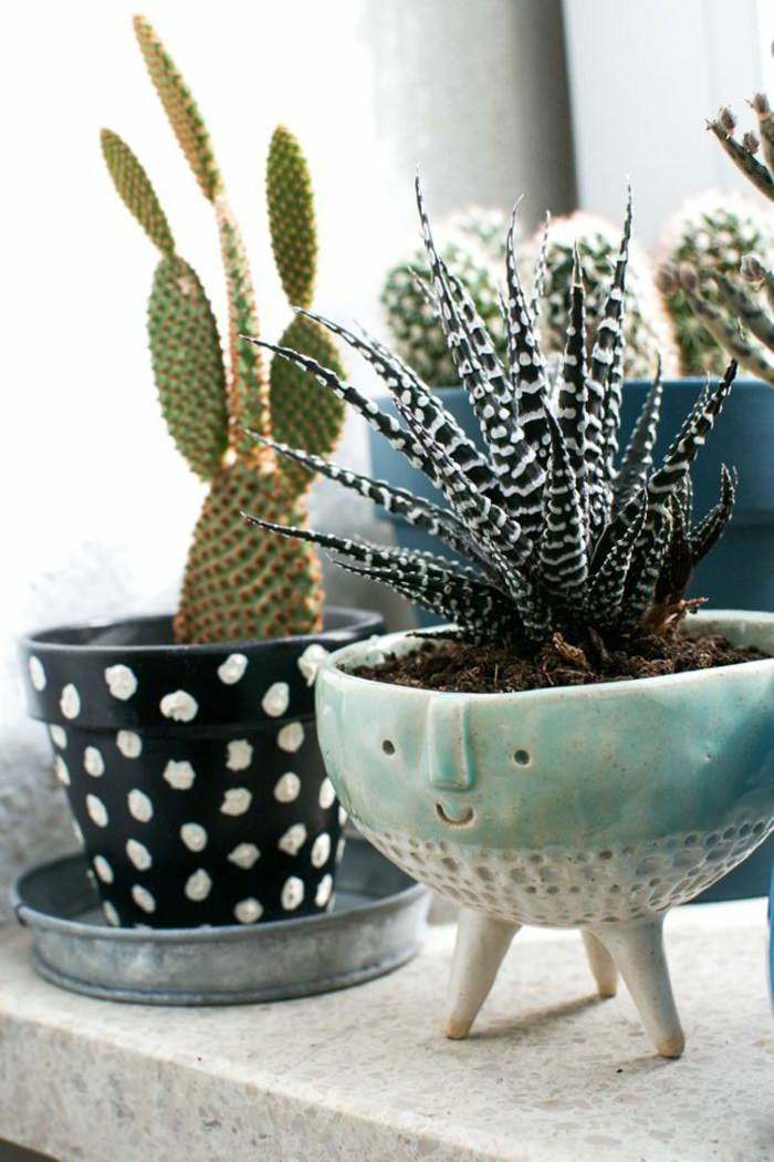 use cool pots and planters to grow your plants must remember that pots accentuate the beauty of plants and should be chosen correctly - House Plants Decoration Ideas