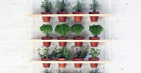 Potted Herb Garden Ideas container gardening potted herbs Not Only Does This Herb Shelf Uses Your Vertical Space Into A Beautiful And Productive Potted Garden But Its Also A Rather An Easy To Make Project