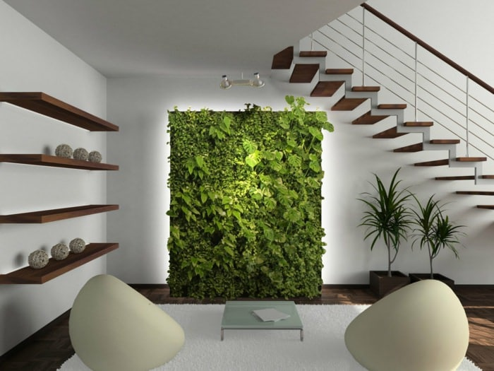 great ideas to display houseplants  indoor plants decoration, Natural flower