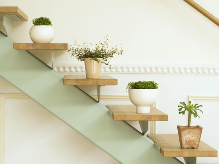 If There Is A Scope And Brightness Then Arranging Plants On Staircase Good Idea