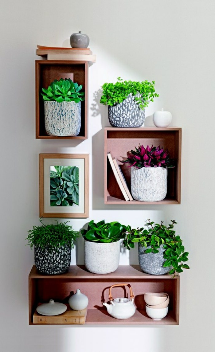 99 great ideas to display houseplants indoor plants decoration page 2 of 5 balcony garden web - Plant decoration in living room ...