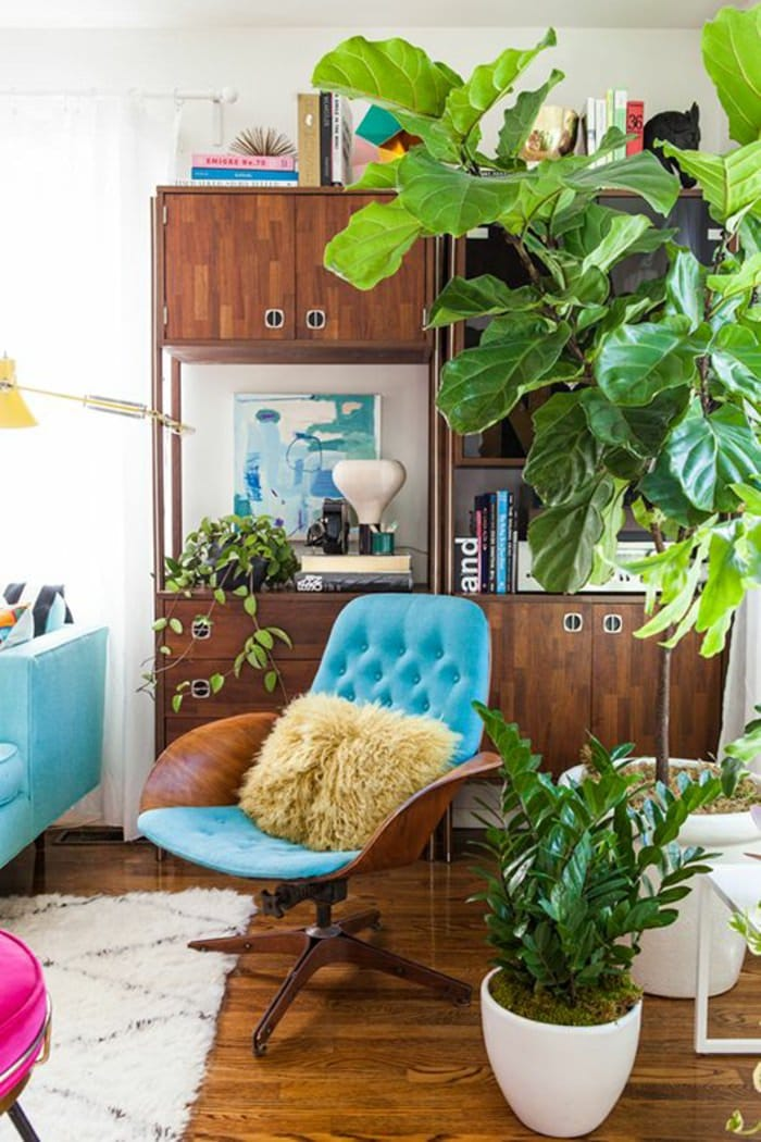 99 great ideas to display houseplants indoor plants for Room decor ideas with plants