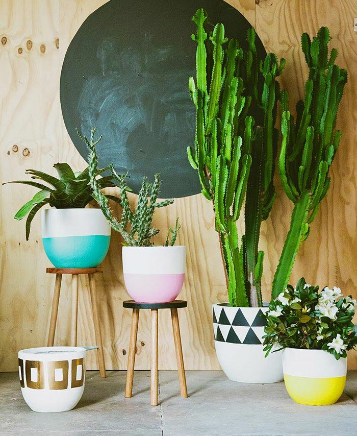 The more beautiful the pots, the more beautiful your plants look as written  above Pots accentuate the beauty of plants.