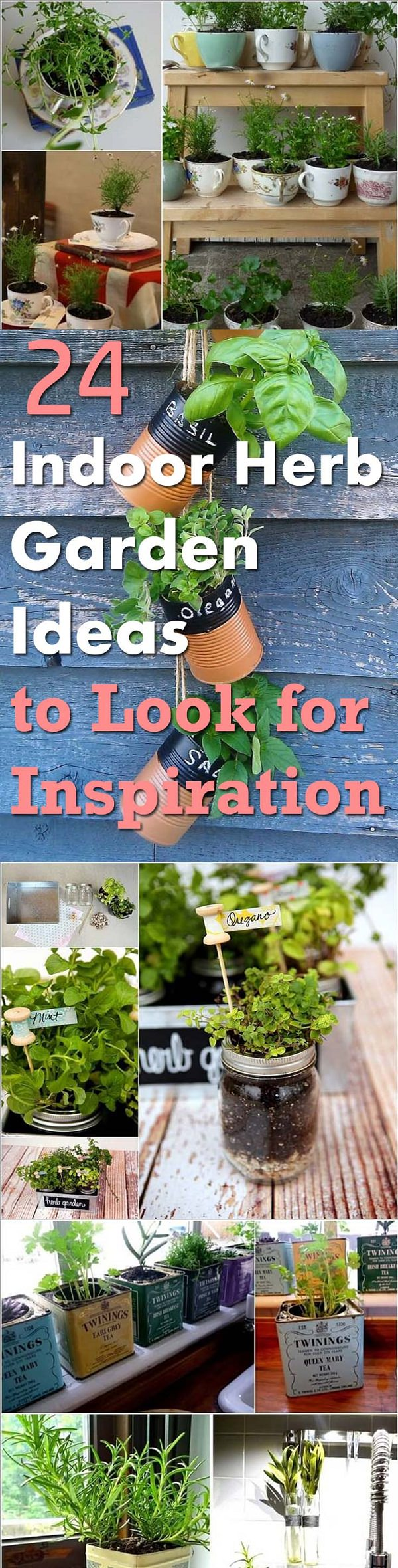 pin it indoor herb garden ideas - Indoor Herb Garden Ideas