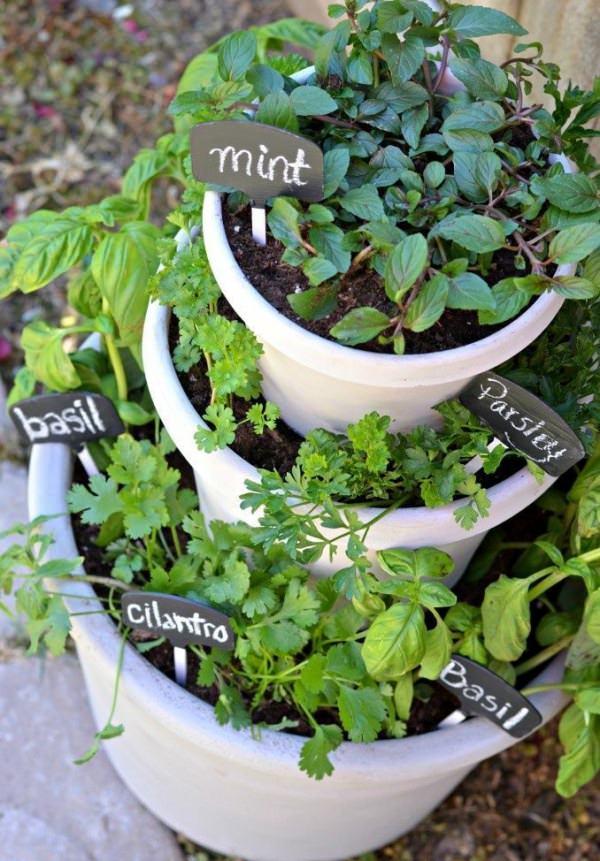 Taired Herb Garden