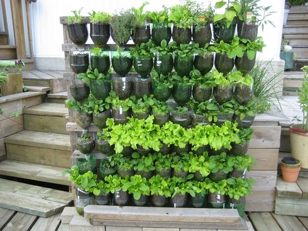 13 plastic bottle vertical garden ideas soda bottle for Como arreglar un jardin pequeno