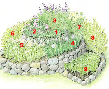 Herb Garden Design Examples how to build a spiral herb garden | spiral garden design, plants