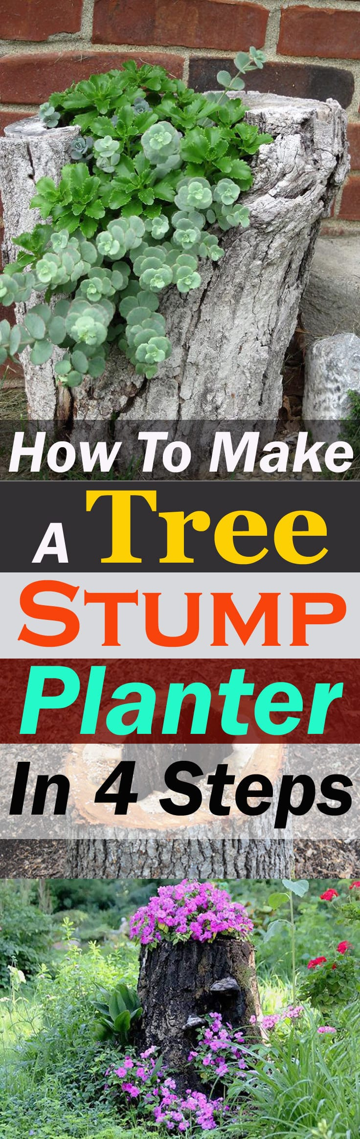 Learn How To Make A Tree Stump Planter And Make Use Of An Old Stump That