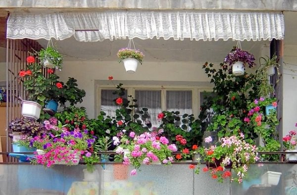 11 Small Apartment Balcony Ideas With Pictures | Balcony Garden Web