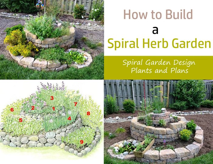 How To Build A Spiral Herb Garden | Spiral Garden Design, Plants And Plans  | Balcony Garden Web