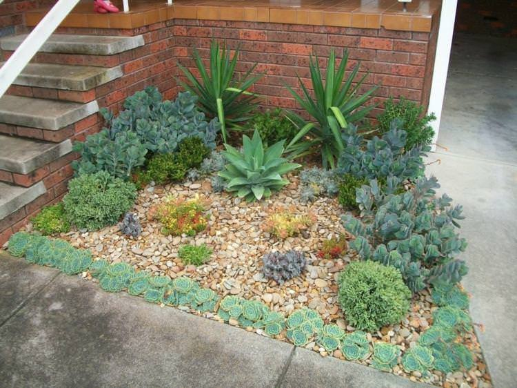 small garden embellished by some succulents succulent planting ideas 25