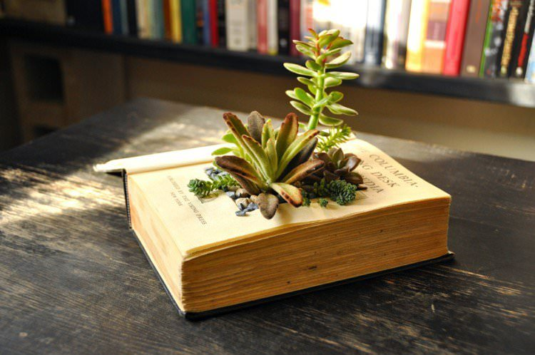 if you have an old book make a succulent vintage book planter out of it how checkout this step by step tutorial on hgtv