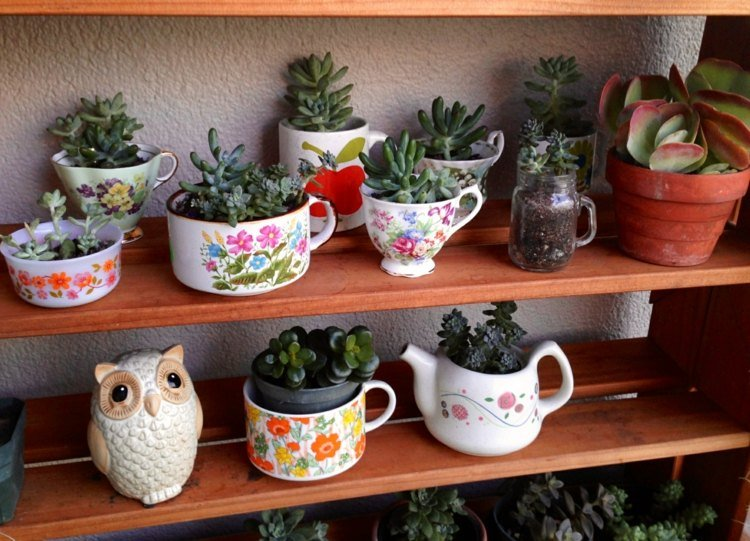 use old teacups to create a succulent teacup garden you can check out its tutorial here