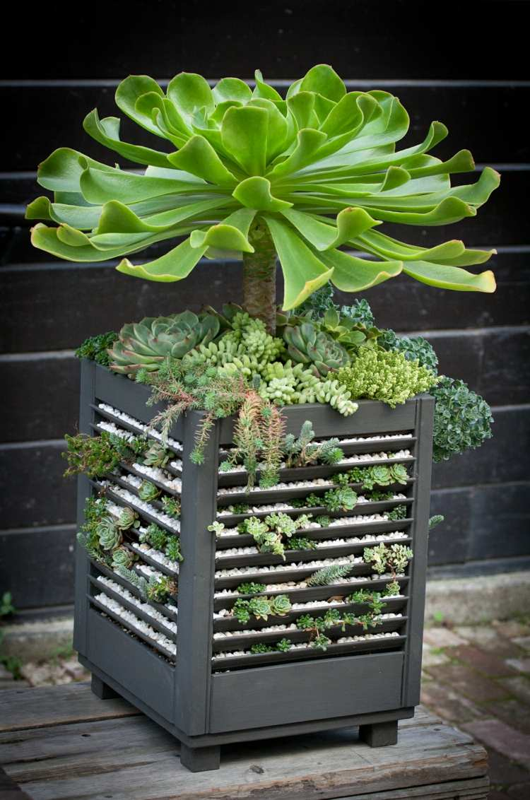 Design Succulent Planter Ideas 47 succulent planting ideas with tutorials garden this splendid idea is for your porch or any other outdoor indoor space choose a large pot and grow tall in it