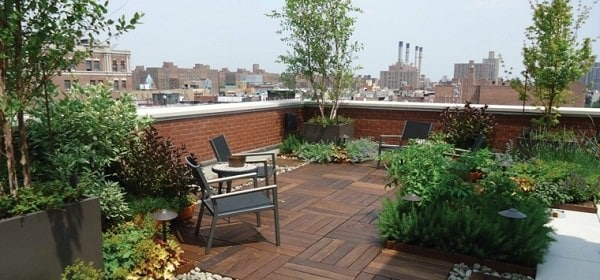 terrace garden privacy ideas (2)