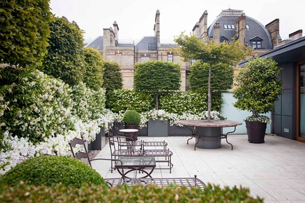 23 terrace garden tips to turn it into an urban oasis for Roof garden milano