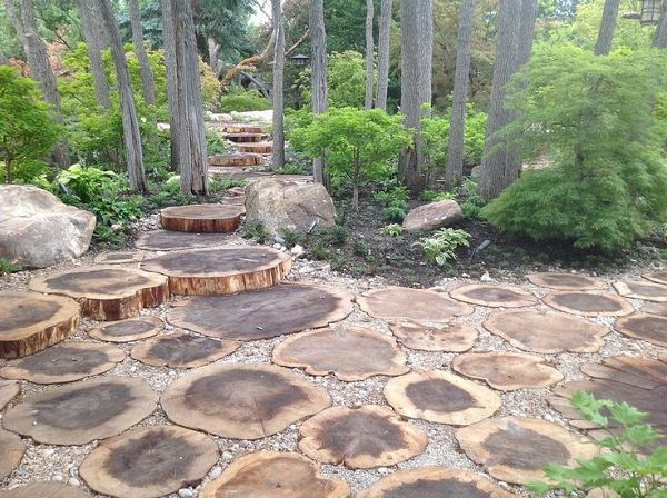 10 amazing tree stump ideas for the garden balcony for Tree trunk slice ideas
