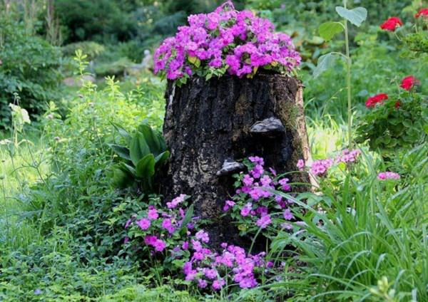 Planter Garden Ideas 10 amazing tree stump ideas for the garden balcony garden web make a beautiful tree stump planter in your garden you can find a step by step tutorial here for ideas and inspiration check out our post on tree stump workwithnaturefo