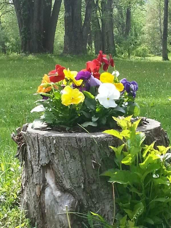 Tree Stump Planter Ideas 19