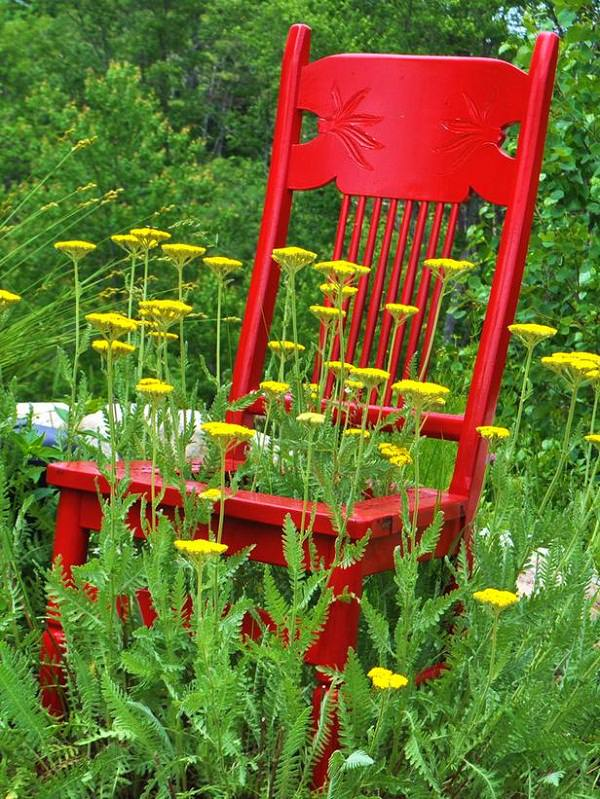 Wonderful The Chair Entwined With Plants